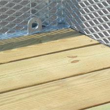 2x8-pt-plank-deck